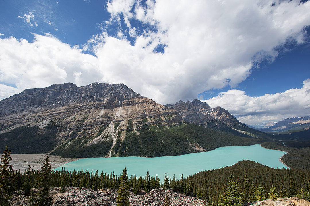 Banff-Peyto-Lake-Icefields-Parkway-Alberta-05
